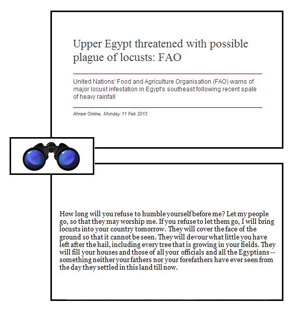 SPEC plague of locusts